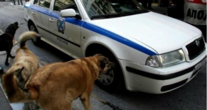Πυροβολισμός κατά πραγμάτων: Άμυνα σε επίθεση από σκύλο, όχημα, σκάφος